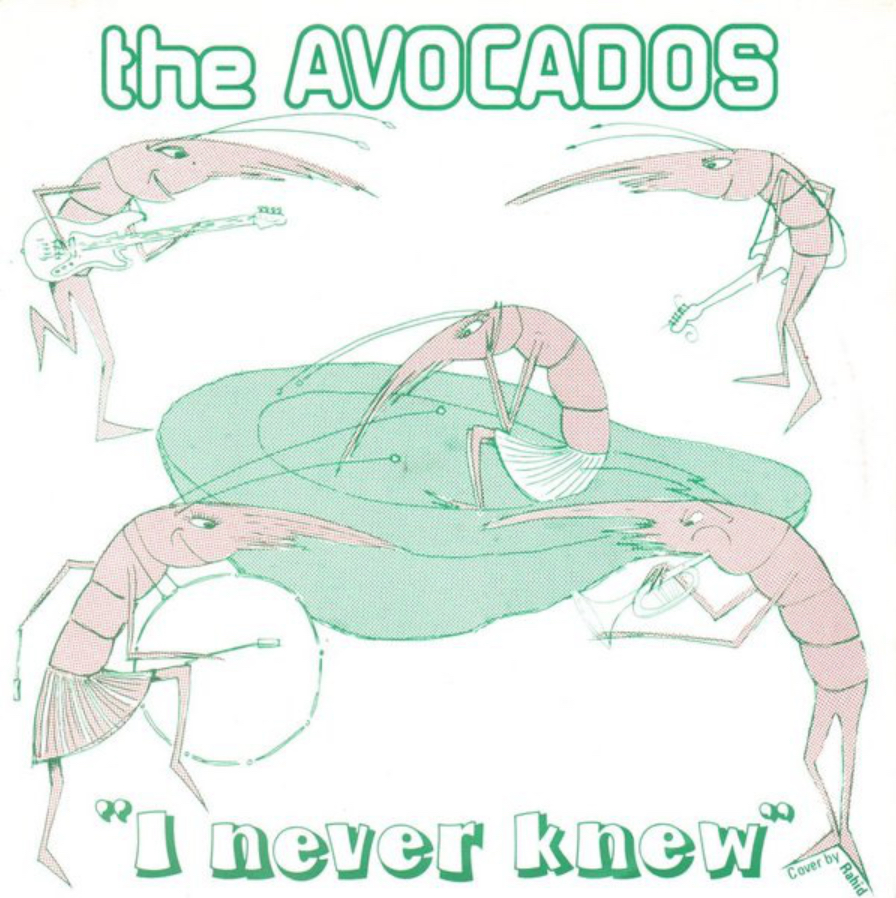 The Avocados - I Never Knew - 41 Rooms - show 68
