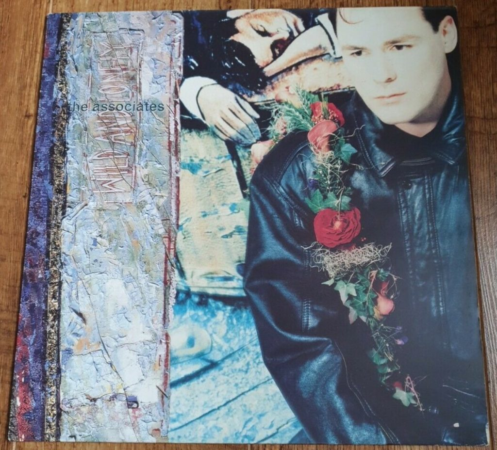 The Associates - Wild and Lonely - 41 Rooms - show 90